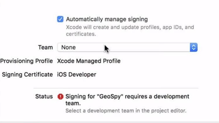 Set up a development team